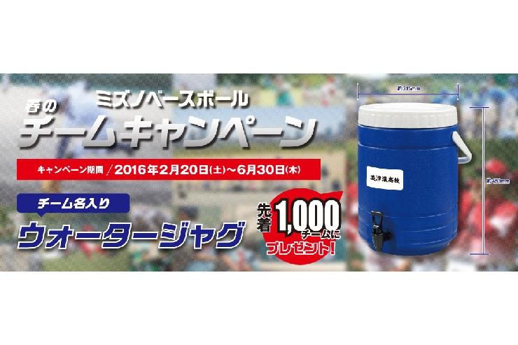 春のミズノベースボールチームキャンペーン!!