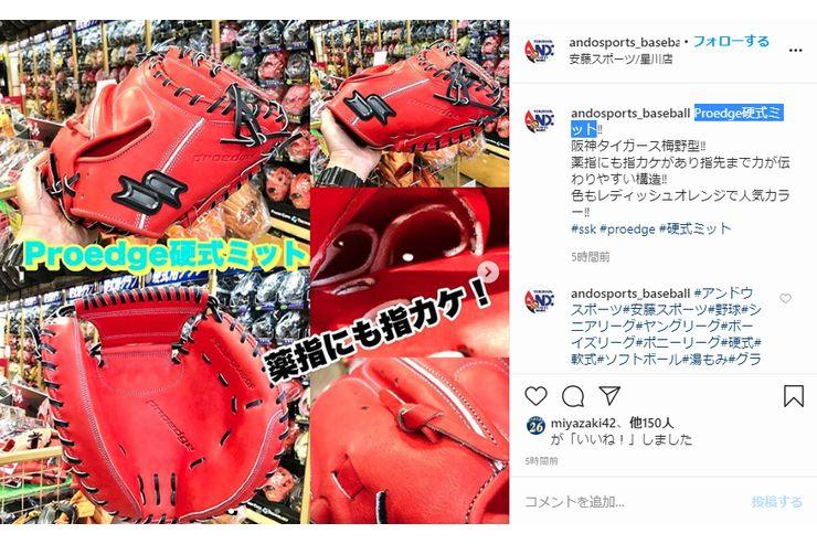 【野球】SSK:Proedge硬式ミット入荷!
